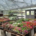 garden center-http://www.jandnfeedandseed.com