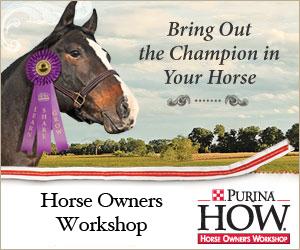 HorseOwnersWorkshopPostGraphic