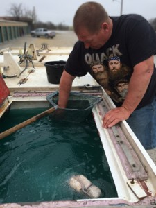 fish truck- http://www.jandnfeedandseed.com