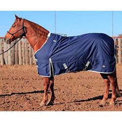 cactus horse blankets